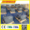 Sew F Series Parallel Shaft Helical Gear Reducer Gearbox Gear Motor