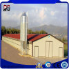 Steel Frame Buildings Steel Structure Chicken House