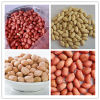 (Long/ Round type) White/Red Skin Peanut Kernel
