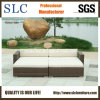 Rattan Sofa/Wicker Corner Sofa/Lounge Sofa (SC-B9503)