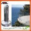 Glass Pool Fence Spigot/Glass Spigot (C7A)
