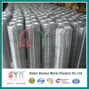 Stainless Steel Mesh Rolls / Welded Wire Mesh Rolls Factory