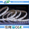 UL Listed IP65 Waterpof Hot Selling SMD3528 LED Strip
