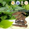 Natural Herb Medicine Bupleurum Falcatum Yin Chai Hu Radix Stellariae