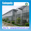 Multi-Span Agricultural Glass Greenhouses