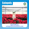 Low Price Glass Multi-Span Greenhouse for Flower