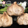 Good Taste Fermented Black Garlic 6 Cm Bulbs (500g/bag)