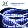 Side View Silicone Waterproof LED Strip (BV-Flex-WS-SV-60-W)