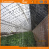 Single Span Plastic Film Green House for Commercial Use