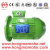 0.75kw 4pole Aluminum Ie3 Induction Motor (802-4P-0.75kw)