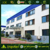 Light Steel Structure Building for Sale Made in China