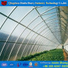 China Factory PC Sheet Hydroponic Greenhouse for Tomato