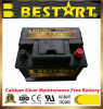 Free Shipping 12V 60ah SMF Car Battery Bci 96r