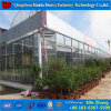 Multispan Venlo Commercial Hydroponic Glass Greenhouse for Strawberry