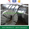 Hot Rollded Stainless Steel Coil (200)