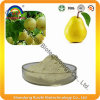 GMP Factory Top Quality Pear Fruit Powder/Pear Juice Powder/Fuirt Juice Powder Pear Powder