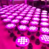 Most Popuplar 12W Hydroponic LED Grow Light E27 Lamp