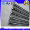 Galvanized Common Nails/Roofing Nais/Concrete Nials