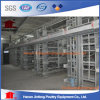 Automatic Layer Chicken Equipment Eggs Poultry Cage