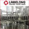 Pet Hot Bottling Beverage Juice Filling Line/Processing Machine