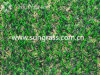 20mm Landscape Garden Artificial Grass (SUNQ-HY00176)