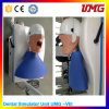 Medical Teaching Equipment High Quality Dental Teaching Model