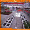High Production Polycarbonate Sheet Multi-Span Greenhouse