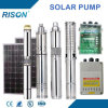Top Quality DC Submersible Solar Pump Price (5 Years Warranty)