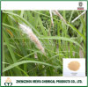 Natural Organic Lalang Grass/Couch Grass Powder Extract/Imperata Cylindrica Root Extract