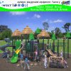 New Design Outdoor Playground Equipment (HK-50010)