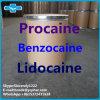 Narcotic Analgesics Tetracaine Aarticaine Benzocaine Procaine Lidocaine HCl