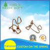 Special Shape Spring with Good Quality and Fast Delivery