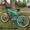 China Factory 250W Good Quality Electric Mountain Bike for Sport