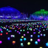 Rose Flower Solar String Light LED Holiday Light with Land Support