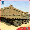 Used Wheel HOWO Heavy Dump Cargo Truck (8*4, 12Tyres, diesel-engine)