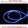 Christmas Holiday Decoration LED Lights