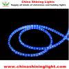 Christmas Holiday Decoration LED Lights