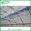 Modern plastic film greenhouse for agriculture