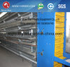 Farm Poultry Equipment Chicken Layer Cage with Automatic Feeding System