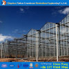 China Polycarbonate Material Tunnel PC Commercial Greenhouse