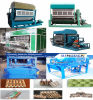 2017 Best Selling Paper Egg Tray Making Machine Vt-2500 4*4
