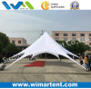 Easy Assemble Diameter 17m Star Tent for Party
