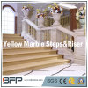 Popular Stone Marble Stair/Steps/Step&Riser for Lobby/Villa/Hotel Decoration