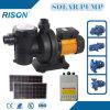 Quiet Solar Pool Pump (5 Years Warranty)