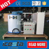 Icesta Easy Installing Seawater Ce Flake Ice Generator