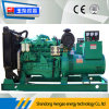 100kVA Water-Cooled Diesel Generator Set with 1 Year Guarantee