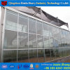 Venlo Type Glass Covered Tomato Greenhouse with Hydroponic Systems