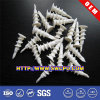 Custom White Nylon Plastic Fastener Screw/Bolt
