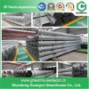 Film, Venlo, Glass PC Sheet Greenhouse Steel Structure with High Quality