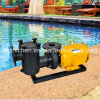 Swimming Pool Pump Recycling and Filtering 7.5HP
